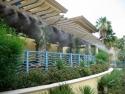 resorts_trellis_plants